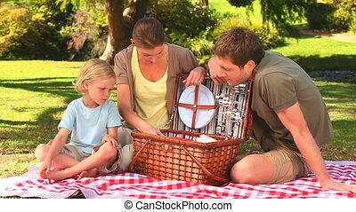 hebben, het bereiden, familie picknick