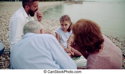hebben, meer, picnic., multigeneration, familie vakantie