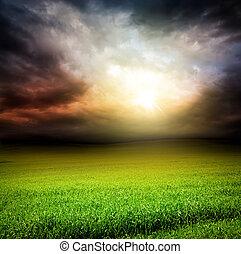hemel, gras zon, groen licht, donker, akker