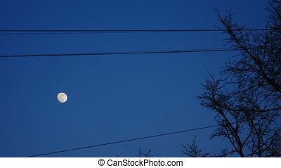 hemel, volle maan