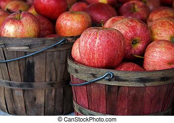 herfst, appeltjes