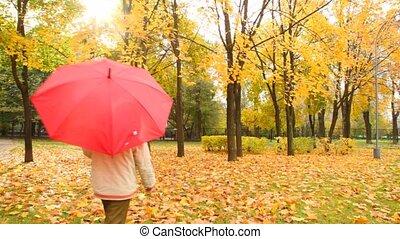 herfst, jongen, fototoestel, park, wandelingen