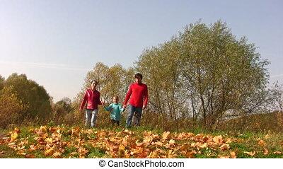 herfst, jongen, lopend met loof, gezin