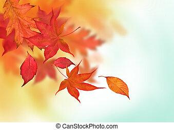 herfst, kleurrijke, dalingen