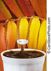 herfst, koffie, gespetter, melk