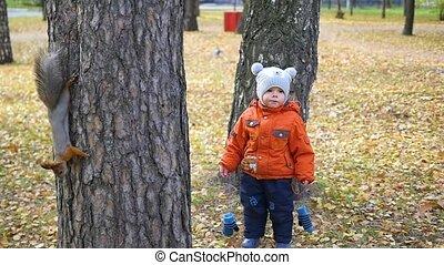 herfst, park, kinderen, wandeling
