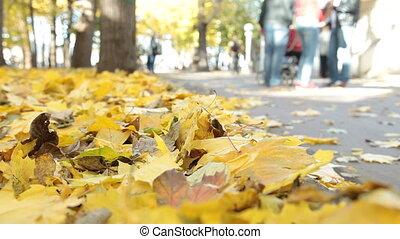 herfst, park, mensen