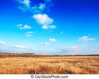 herfst, prairie