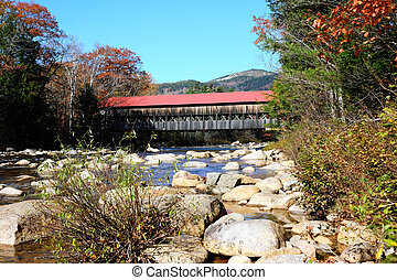 herfst, rivier, gierzwaluw
