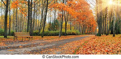 herfst, stad, bladeren, park, het vallen