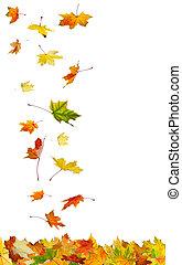 herfst, vallende verlofen