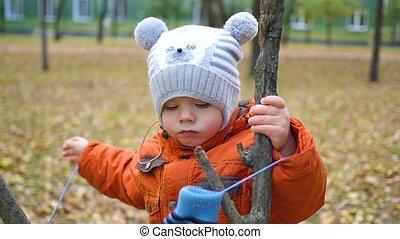 herfst, wandeling, park, kind