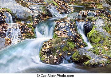 herfst, waterval
