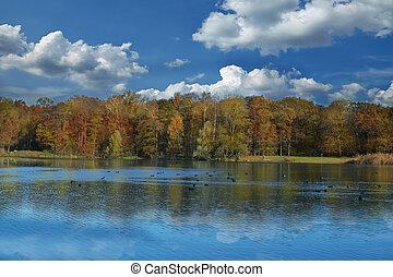 herfst, weerspiegelen, meer, bomen
