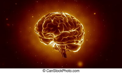 hersenen, pulsing, groot, sterke
