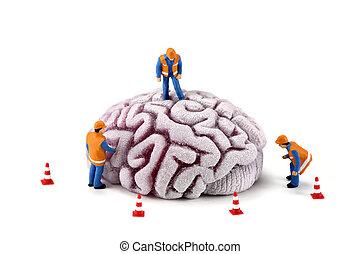 hersenen, werkmannen , bouwsector, concept:, inspecteren