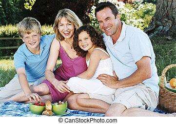 het glimlachen, buitenshuis, picknick, gezin, zittende