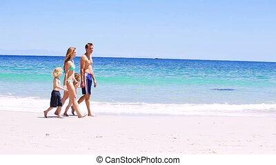 het glimlachen, wandelende, gezin, zand