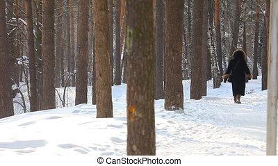 het lopen., winter