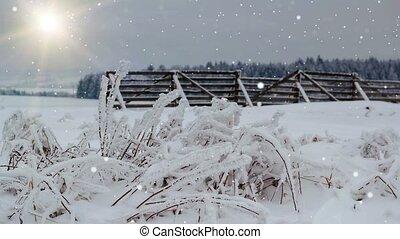 het sneeuwen, zon, winterlandschap