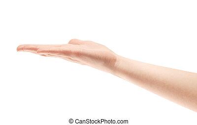 het tonen, vrijstaand, hand