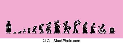 het verouderen, leven, process., vrouwlijk, cyclus
