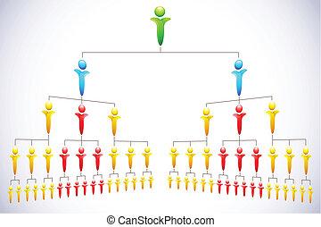 hiërarchie, organisational