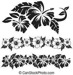 hibiscus, bloemen, hawaiian
