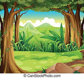 hoge bergen, groen bos, door