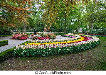 holland, tulpen, lisse, steegje, park, kleurrijke, keukenhof