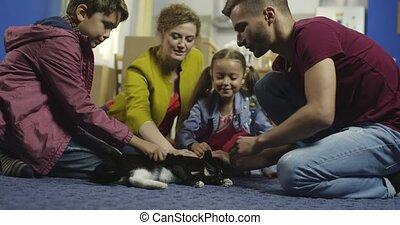 home., gezin, vrolijke , kat
