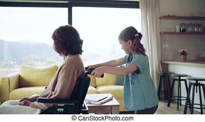 home., haar, meisje, kleine, senior, binnen, grootmoeder, wheelchair