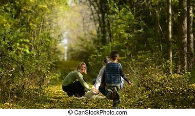 hout, gezin, wandeling
