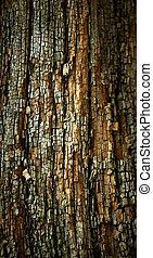 houten, oud, surface., verweerd