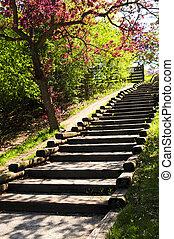 houten, trap, park