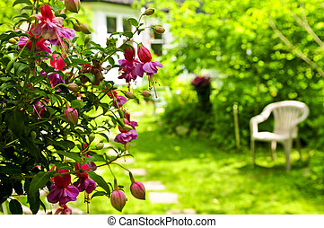huis tuin