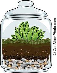 illustratie, plantkunde, terrarium