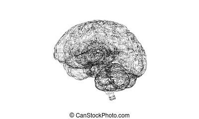 intelligentie, kunstmatig, hersenen, achtergrond, digitale , witte , veelhoek
