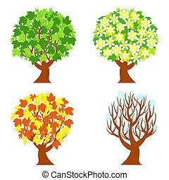 jaargetijden, vier, bomen