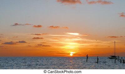 jachthaven, tranquil, zonopkomst, volgende