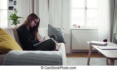 jonge, student, sofa, vrolijke , studying., vrouwlijk, zittende