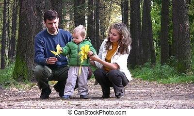 jongen, bladeren, park, ouders