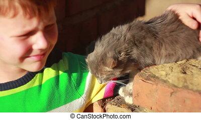 jongen, kat, spelend