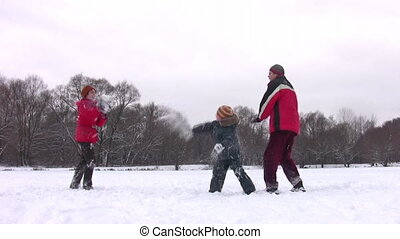 jongen, sneeuwbal, spelend, gezin