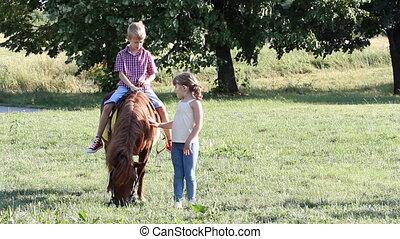 jongen, weinig; niet zo(veel), pony, meisje, vrolijke