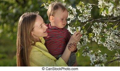 jongen, weinig; niet zo(veel), tuin, haar, blossom , moeder, baby