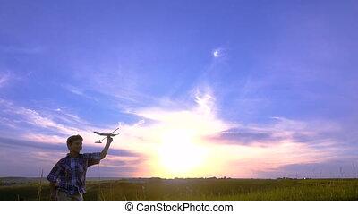 jongen, zijn, silhouette, vliegtuigen, tegen, rennende , ondergaande zon