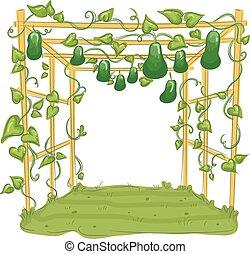 kalebassen, traliewerk, prieel, tuin