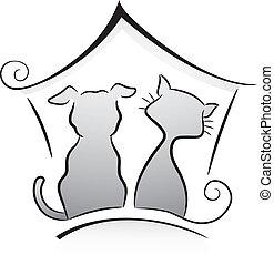 kat, dog, schuilplaats