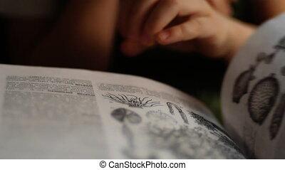 klein meisje, herbarium